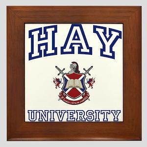 HAY University Framed Tile