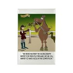 Horse Play Rectangle Magnet