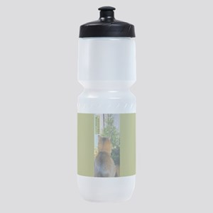 Cat And Christmas Tree Sports Bottle