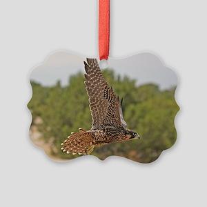 Peregrine Falcon Picture Ornament