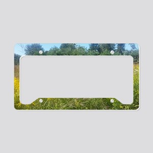 Meadow License Plate Holder