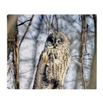 Great Gray Owl Throw Blanket
