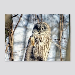 Great Gray Owl 5'x7'Area Rug