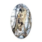 Great Gray Owl 35x21 Oval Wall Decal