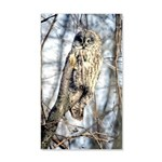 Great Gray Owl 35x21 Wall Decal
