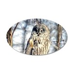 Great Gray Owl 20x12 Oval Wall Decal