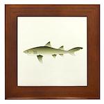 Lemon shark Framed Tile