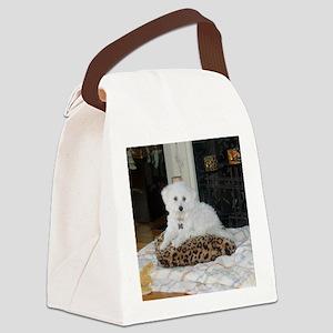 Sasha Canvas Lunch Bag