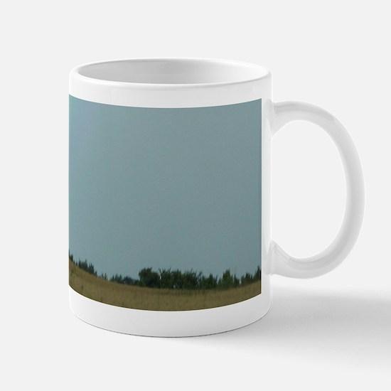 Rainbow over a Field Somewhere Mug