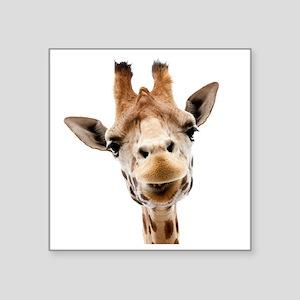 """Giraffe Face New Profile Square Sticker 3"""" x 3"""""""