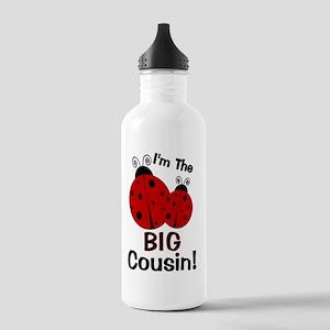 imtheBIGcousin_ladybug Stainless Water Bottle 1.0L