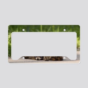 Baby Bandits License Plate Holder