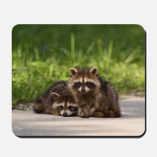 Baby Bandits Mousepad