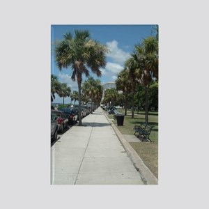 The Battery Charleston South Caro Rectangle Magnet