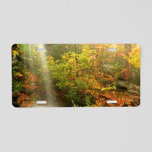 Autumn Waterfall Aluminum License Plate