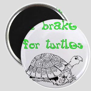 IBrake4TurtlesDark Magnet