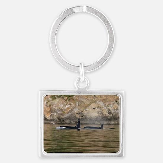 IMG_9047 Landscape Keychain