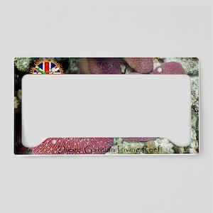 Postcard-fungiarepanda-v1 License Plate Holder