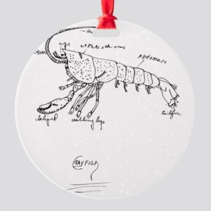 crayfish Round Ornament