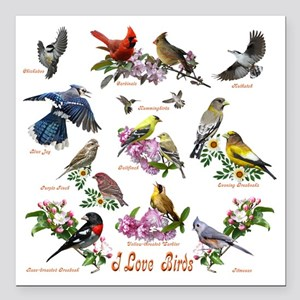 "12 X T birds copy Square Car Magnet 3"" x 3"""