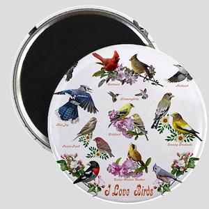 12 X T birds copy Magnet