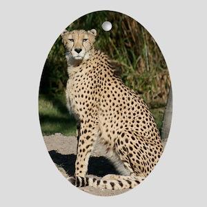 cheetah1 Oval Ornament