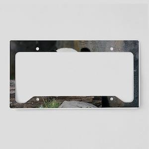 panda License Plate Holder