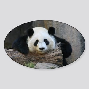 panda Sticker (Oval)