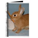 Cute Dwarf Bunny Rabbit Journal