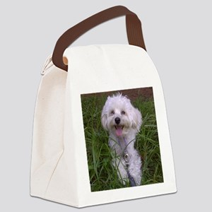 Trinket in the Grass Canvas Lunch Bag