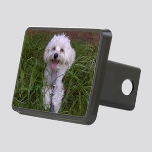 Trinket in the Grass Rectangular Hitch Cover