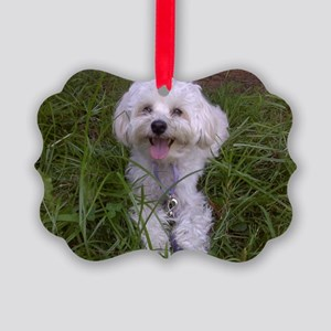 Trinket in the Grass Picture Ornament