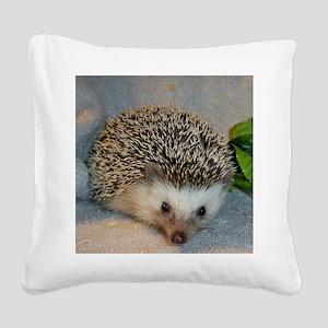 dammler Square Canvas Pillow