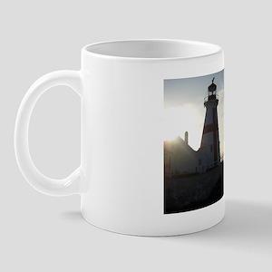 IMG_6948 Mug