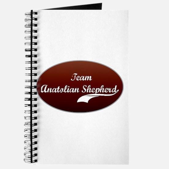 Team Anatolian Journal