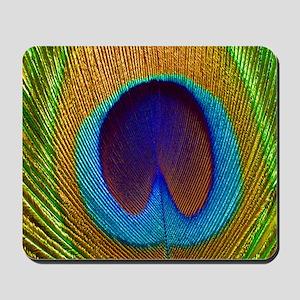 2-PeacockFeather_PILLOW Mousepad