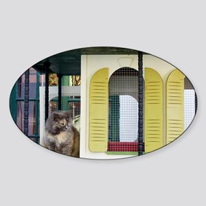 hemi cathouse7x5 Sticker (Oval)