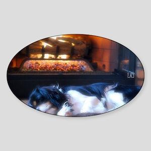 Cheyenne_fire Sticker (Oval)