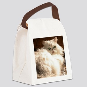 persianwht22 Canvas Lunch Bag