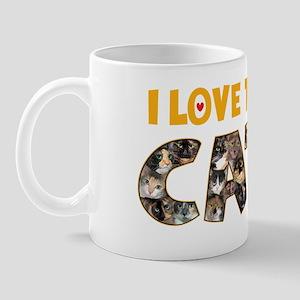 I love Tortie Cats Mug