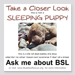 """take_a_closer_look_BSL-t Square Car Magnet 3"""" x 3"""""""