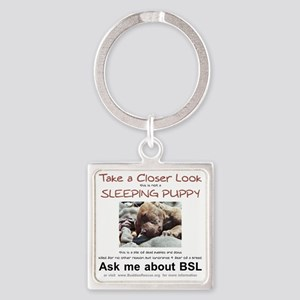 take_a_closer_look_BSL-transparent Square Keychain