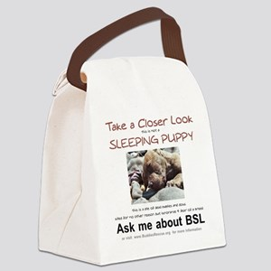 take_a_closer_look_BSL-transparen Canvas Lunch Bag