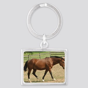 Garfield in holding pen May 200 Landscape Keychain