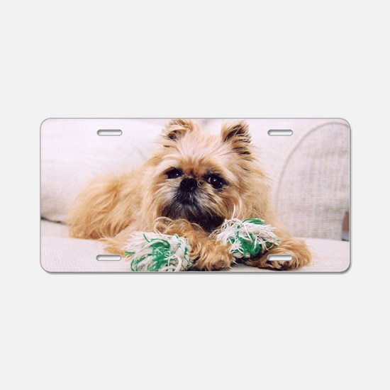 Brussels Griffon Aluminum License Plate