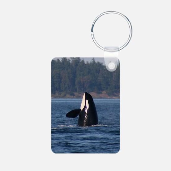 IMG_8289 - Copy Keychains