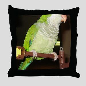 IMG_7327 Throw Pillow