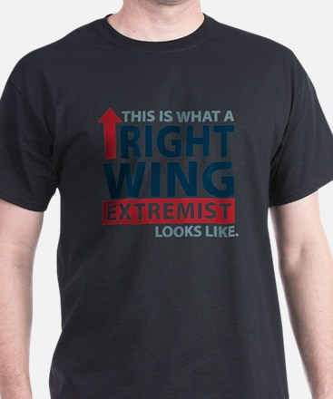RIGHTWINGEXTREMIST-COLORS T-Shirt