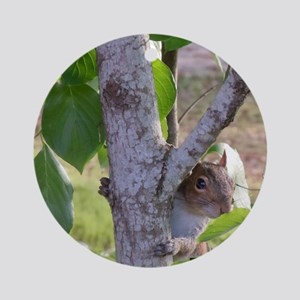 peekaboosquirrel Round Ornament