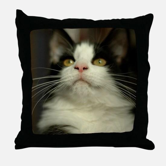 pet-nc16 Throw Pillow